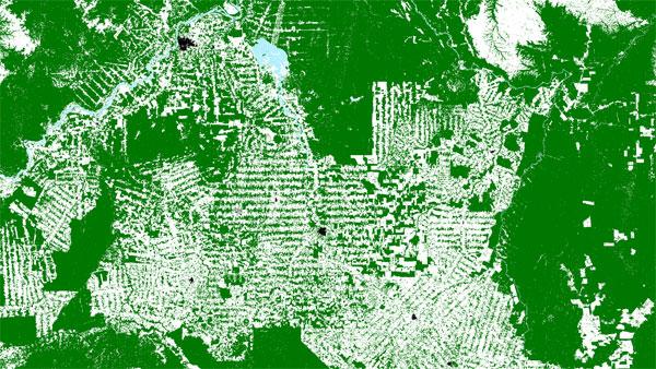 Wycinka lasów w brazylijskiej dżungli na satelitarnej mapie lasów
