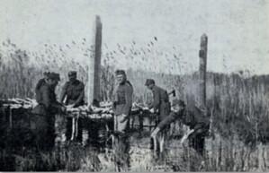 Słupy graniczne na bagnach nad Prypecią, słup polski dodatkowo oznaczony jako fotopunkt