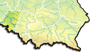 Opolskie zamawia bazy danych dla SIP <br /> rys. Wikipedia