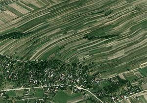 W Podlaskiem nie chcą scalać <br /> fot. Google Earth