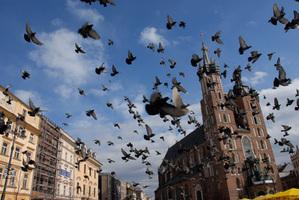 Kraków zamawia mapę hałasu <br /> fot. JP