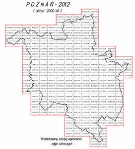 Poznań zamawia zdjęcia z małym pikselem