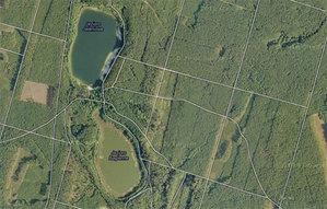 Pilskie lasy zamawiają ortofotomapę <br /> fot. Google Maps