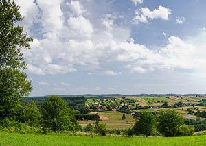 Roztoczański PN będzie mieć geoportal i chmurę punktów <br /> fot. Wikipedia/Rafał Pikul