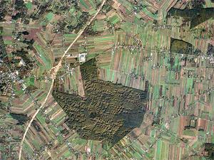 Firma Planet Labs zebrała 95 mln dol. na małe satelity <br /> Autostrada A1 koło Łodzi (fot. Planet Labs)
