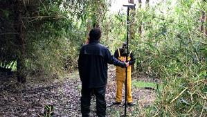 Jak Spectra radzi sobie w lesie deszczowym?