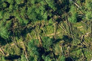 Zdjęcia lotnicze dokumentują skalę zniszczeń po przejściu żywiołu