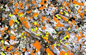 Czy nowe technologie zawitają do krajowej kontroli dopłat? <br /> Rozróżnienie upraw na zdjęciu z Sentinela-2: kolor pomarańczowy odpowiada polom słonecznika, a żółty -kukurydzy (Copernicus Sentinel data (2015)/ESA/University of Louvain/CESBIO)