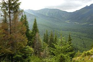9 parków narodowych z dofinansowaniem na badania teledetekcyjne