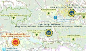 Produkty regionalne i tradycyjne w Małopolskiej IIP