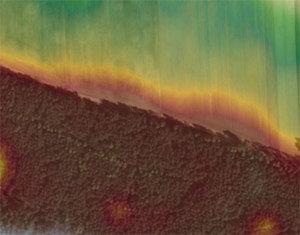 Spektakularne laserowe odkrycie w Borach Tucholskich <br /> fot. Geoportal.gov.pl (zdjęcie ilustracyjne)