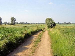 Z życia regionów: o drodze widocznej tylko w ewidencji <br /> Zdjęcie ilustracyjne