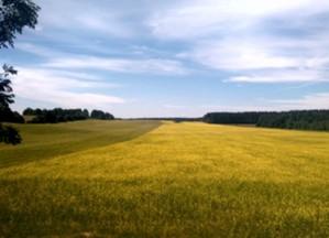 Olsztyński KOWR zamawia usługi geodezyjne