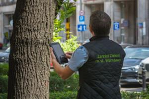 Inwentaryzacja warszawskich drzew dla skuteczniejszej ochrony