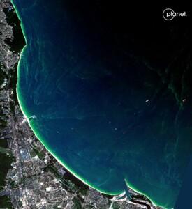 Zakwit sinic okiem konstelacji Planet Scope <br /> Sopot, 19 lipca