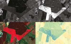 Co dalej z satelitarnym systemem monitoringu upraw? <br /> fot. KOWR