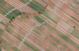 ARiMR zamawia GIS dla LPIS <br /> fot. Geoportal.gov.pl
