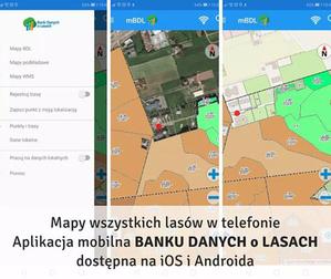 Jest aplikacja mobilna z mapami polskich lasów