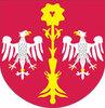 Powiat skierniewicki kupuje sprzęt w ramach budowy RSIP