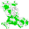 Wałbrzyskie lasy ponownie zamawiają ortofoto