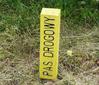 GDDKiA dołoży do prac geodezyjnych w pasie drogowym