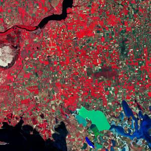 Jak zdjęcia satelitarne mogą pomóc w walce z pandemią COVID-19? <br /> Południowa Ukraina, zdjęcie wykonane przez satelitę Sentinel-2 w bliskiej podczerwieni (żr. ESA)