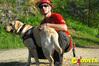 <b class=pic_title>Pies - najlepszy przyjaciel ratownika</b> <br /> <br /> <b class=pic_author>fot.  Marek Pudło</b><br /> <br />