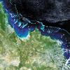 Blaknące koralowce na obrazach z Envisata