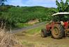 Dane dla rolnictwa ze SPOTA
