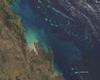 Dane satelitarne dla badaczy raf koralowych