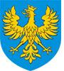 Opolskie: wybór wykonawcy w przetargu na realizację zadań związanych z tworzeniem TBD