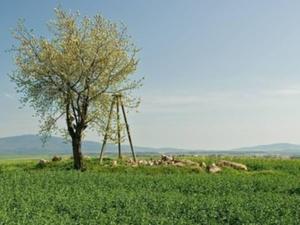 Komitet Geodezji PAN: rozporządzenie o osnowach napiszmy od nowa <br /> fot. Wikipedia/muzolph (Fotopolska.eu)