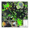 Powstaje satelitarny monitoring sejsmiczny dla zagłębia miedziowego