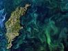 Bezpłatny dostęp do danych satelitarnych Europejskiej Agencji Kosmicznej dla Twojego Biznesu