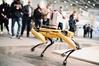 Lasery i roboty na Intergeo 2021