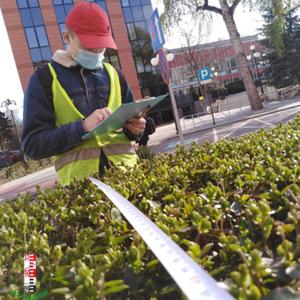 Studenci zinwentaryzowali zieleń na kampusie AGH
