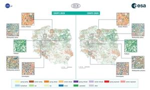 Satelity Sentinel wspomogą monitoring rolnictwa w Polsce <br /> Typy upraw w latach 2019 i 2020 zidentyfikowane w ramach projektu EOStat (fot. EOStat - ESA/IGiK/CBK PAN)