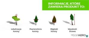 Krajowa Mapa Koron Drzew już dostępna!